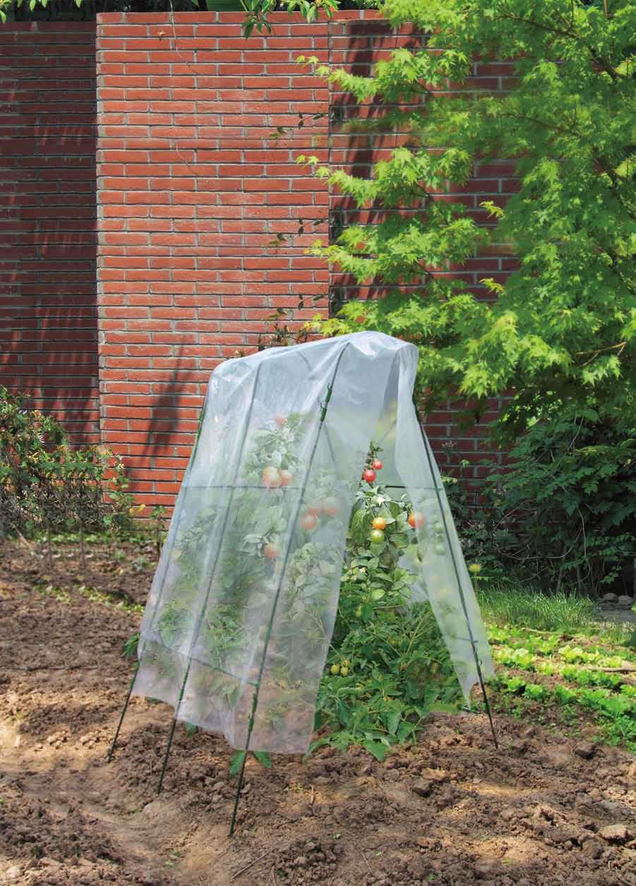 CARREFOUR - Serre de jardin pour tomates - pas cher Achat ...