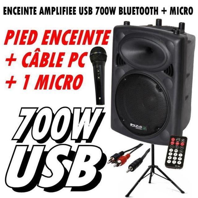 Ibiza Sound Slk12a-bt 700w enceinte - micro - pied - câble pc