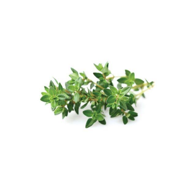 Click & Grow Recharge triple de Thym pour Smart Garden - Click and Grow