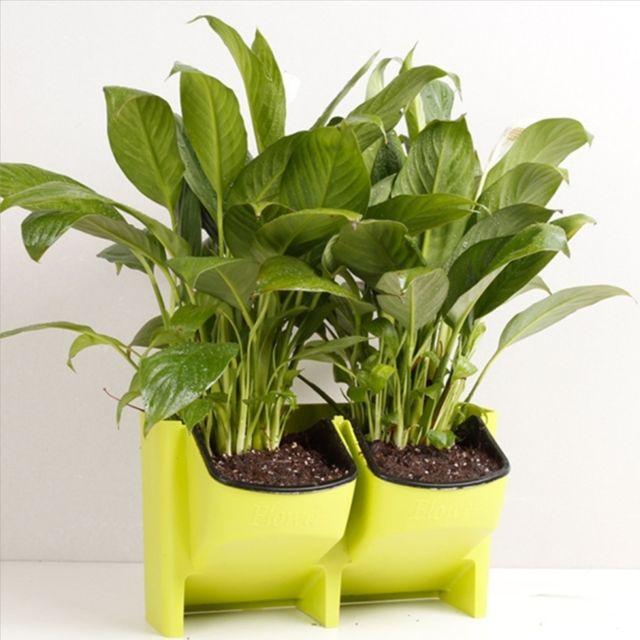 wewoo pot de fleur vert mur v g tal vertical int rieur et ext rieur balcon pots de fleurs. Black Bedroom Furniture Sets. Home Design Ideas
