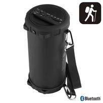 Ngs Technology - Haut-parleur Bluetooth De 20W Sd/USB Aux In/FM Radio. Batterie 1800 MaH