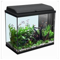 Aquadisio - Aquarium Iban - Longueur de 60cm - Noir