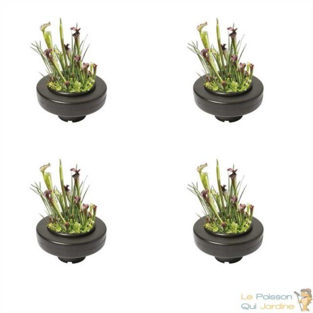 Panier flottant 23 cm de diam/ètre pour plantes de bassins de jardin et /étangs