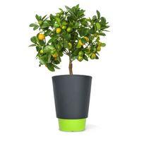 Signee - Pot de fleur Pied à terre 50L - Couleur - Vert pomme