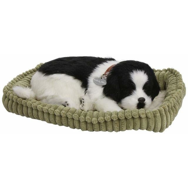 Perfect Petzzz 4902 - Peluche - Chien Border Collie