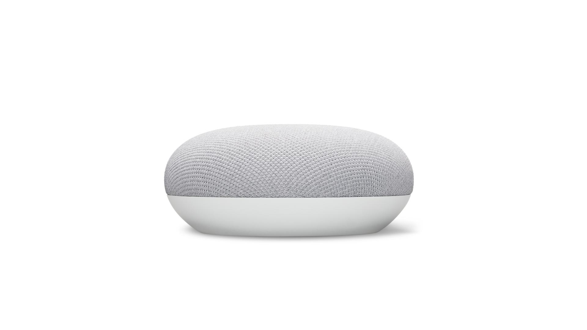 Enceinte connectée Nest Mini Galet Google Gris/Blanc