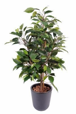 artificielflower arbuste artificiel ficus natasja plante synthtique intrieur h60cm - Arbuste Artificiel Exterieur Pas Cher