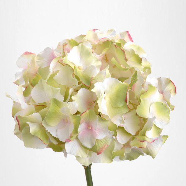 Amadeus Fleur Artificielle D Hortensia Blanche Rose H 47cm Nature