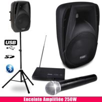 Ibiza Sound - Pack sono portable Enceinte amplifiée 250W, micro