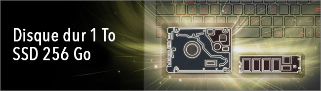 ASUS FX503 - Stockage HDD