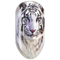 Mollon Pro - Stickers Nail Art Water Decals - N665