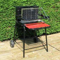Somagic - Barbecue à foyer vertical au charbon de bois Raymond