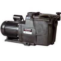 """HAYWARD - pompe à filtration 0,75 cv, 12.5 m3/h mono 2"""" - sp2608xe111"""