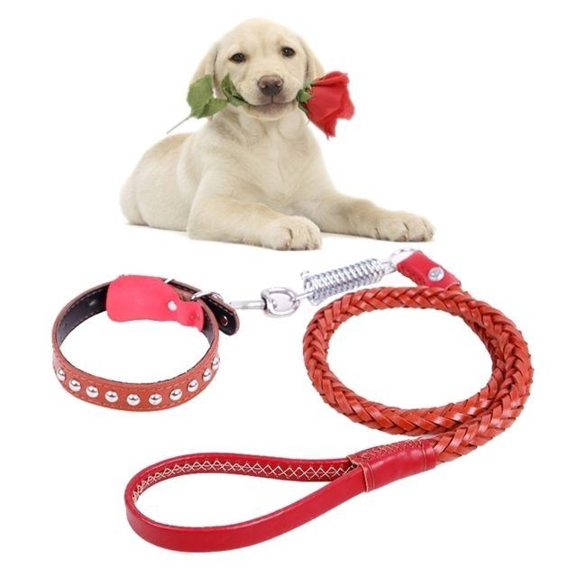 Wewoo Pour les chiens de taille brun moyenne et grande, L, longueur de corde: 130cm de collier: 43-55cm Ceinture de traction e