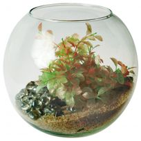 Zolux - Aquarium Boule 4 litres