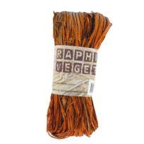Ammi - Raphia végétal Orange 50 g