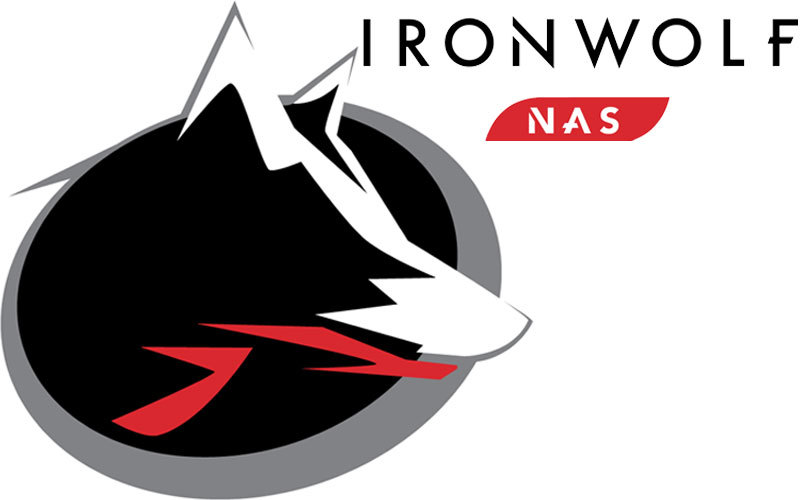 IronWolf 4 To 3.5'' SATA III (6 Gb/s) Cache 64 Mo