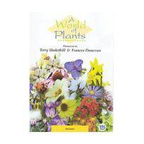 Quantum - A World of Plants - Summer Import anglais