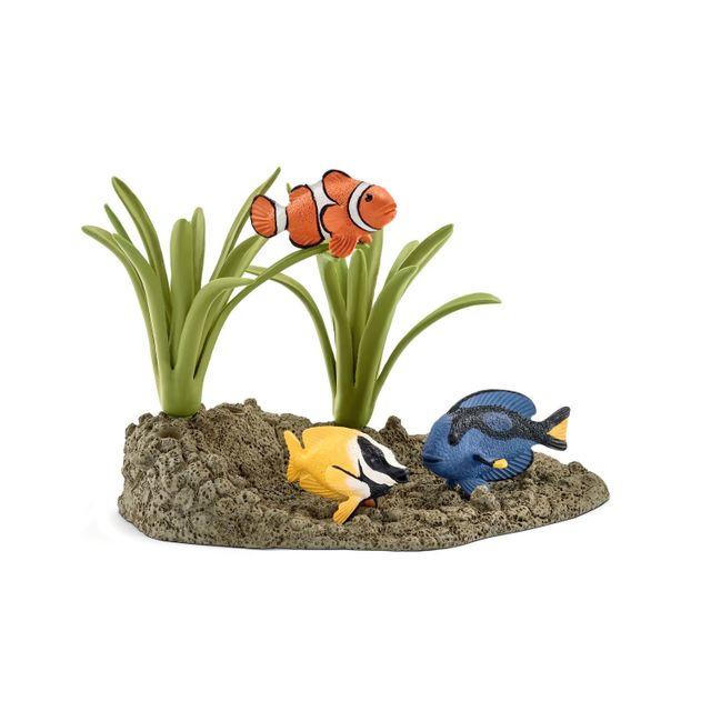 Poissons coralliens - 42327