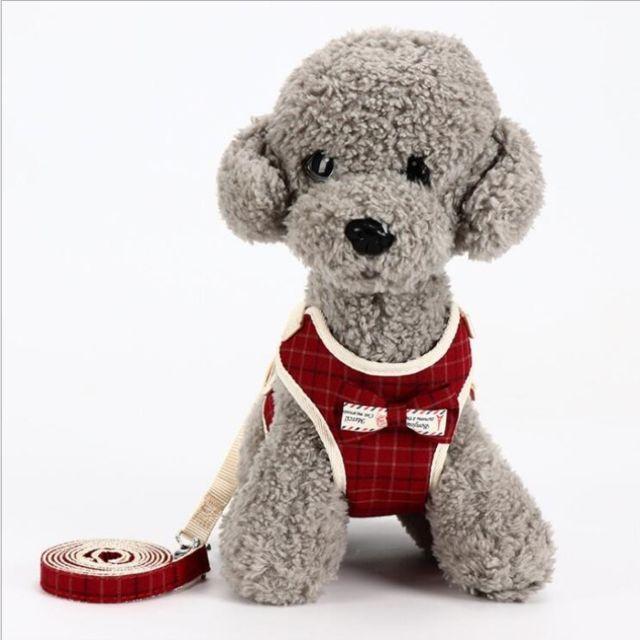 Wewoo Laisse pour chien universel animaux de compagnie dans le doscorde de tractioncordechaînelaissetaille S rouge