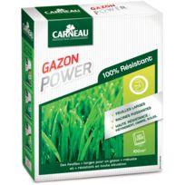 CARNEAU - Gazon haute résistance Power 2,5kg