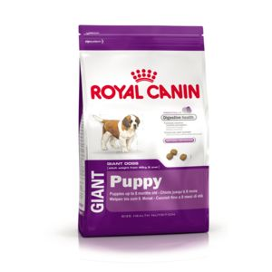 royal canin croquettes giant puppy pour chiot 4kg pas cher achat vente croquettes pour. Black Bedroom Furniture Sets. Home Design Ideas