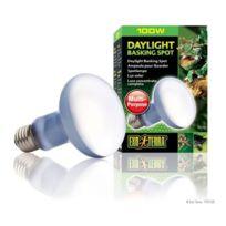 Exo Terra - Daylight Basking Spot ampoule 100 W