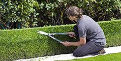 Guide bon jardinier