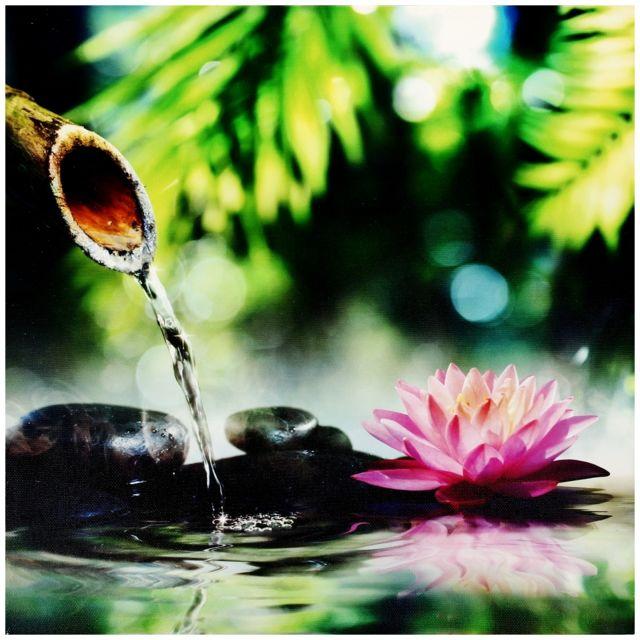 Promobo tableau toile cadre zen fantaisie galet noir sur eau reflet n nuphar pas cher achat - Pierre eau pokemon noir ...