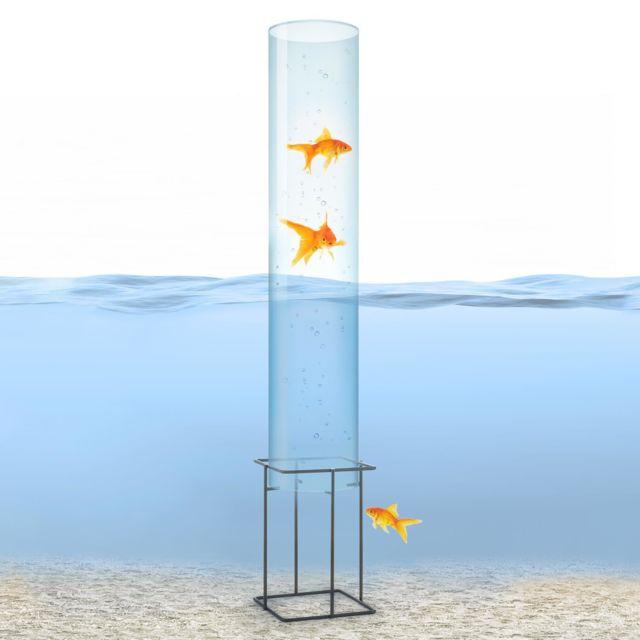 BLUMFELDT - Skydive 100 Tour à poissons 100 cm Ø 20 cm , colonne en verre acrylique , base métal ...
