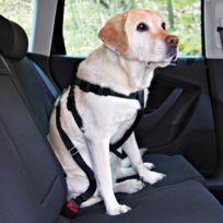Friends On Tour - Ceinture de sécurité pour chiens Taille Xs Longueur 20/50 cm Ex : Yorkshire