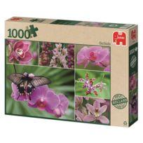 Jumbo - Puzzle 1000 pièces : Orchidées