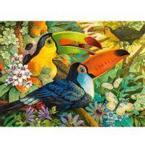 Castorland - Puzzle 3000 pièces : Toucans