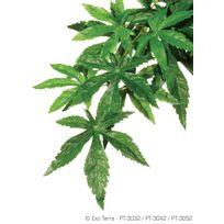 Divers Marques - Plante Abutilon 25x40cm - Exo Terra