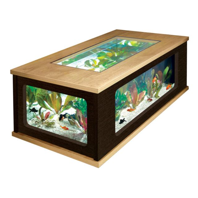 cher Zolux pas basse litres Achat 300 Aquarium Table n0kwP8O