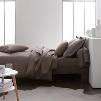Today - Drap plat uni 100% coton 57 fils Plain - Bronze - 180x290cm