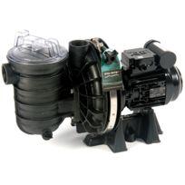 STA RITE - pompe à filtration 1.5cv 18m3/h triphasé - 5p2rf3