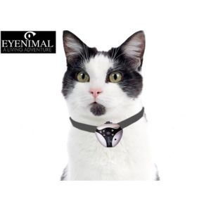 eyenimal cam ra pour chat vision nocturne pas cher achat vente jouet pour chat. Black Bedroom Furniture Sets. Home Design Ideas
