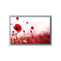 Deco Soon - Tableau Rouge Coquelicot