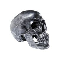 Declikdeco - Tirelire Skull Argenté Antique