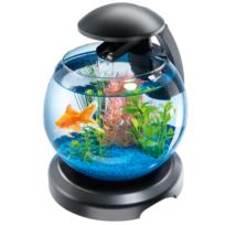 Tetra - Aquarium Cascade Globe