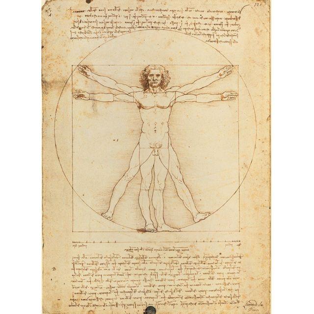 CLEMENTONI - Puzzle 500 pièces : Léonard de Vinci : l'Homme de Vitruve - pas cher Achat / Vente ...