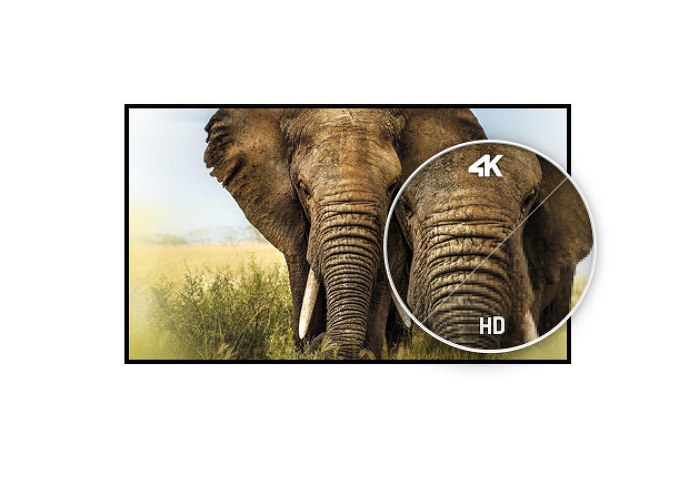 10681896304670.jpg [MS-15481123719086096-0080241118-FR]/Catalogue produits RDC et GM / Online
