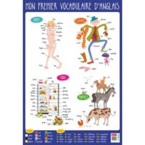 Bouchut Grandremy - poster pédagogique en pvc 76x52cm, le vocabulaire anglais