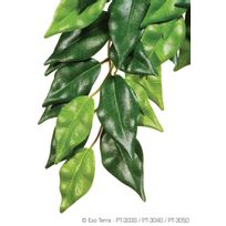 Divers Marques - Plante Ficus 20x55cm - Exo Terra