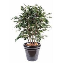 Artificielflower - Arbuste artificiel Ficus Exotica buisson - plante d intérieur - H.110 cm vert - taille : 110 cm