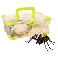 Kanai Kids - Wild Pets-Terrarium avec araignée