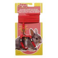 Living World - Harnais et laisse rouge moyen modele pour lapin