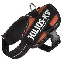 Julius K9 - Julius-k9 Harnais Power Idc - Baby 1 - Xs : 29-36 cm-18 mm - Orange cuivré - Pour chien