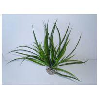 Labeo - Décoration Plante en Plastique Acorus Vert